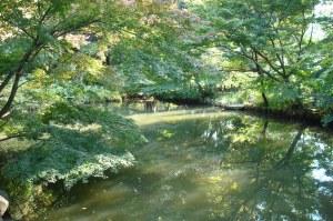 Shin-Edogawa